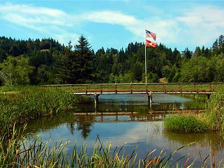 Cedar Bend Golf Club - Gold Beach Oregon Golf